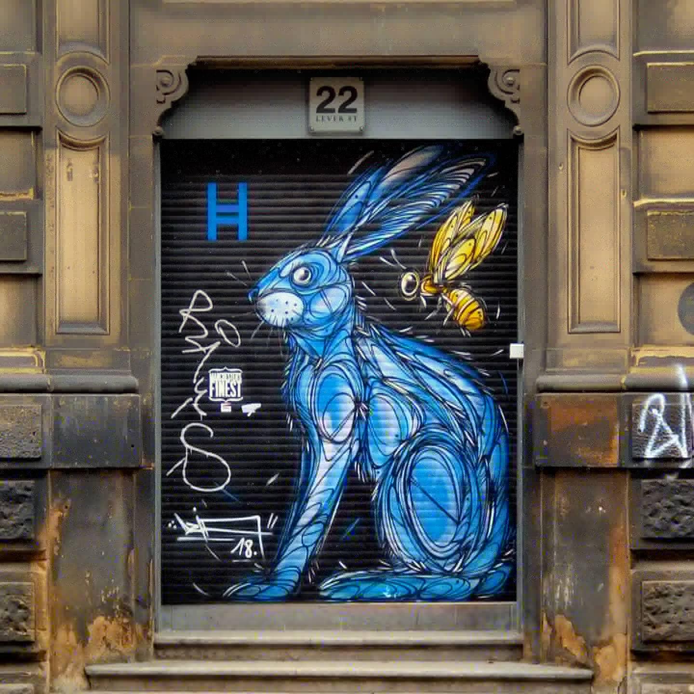 blue rabbit